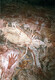 Australian Rock Art with Hands and Animals